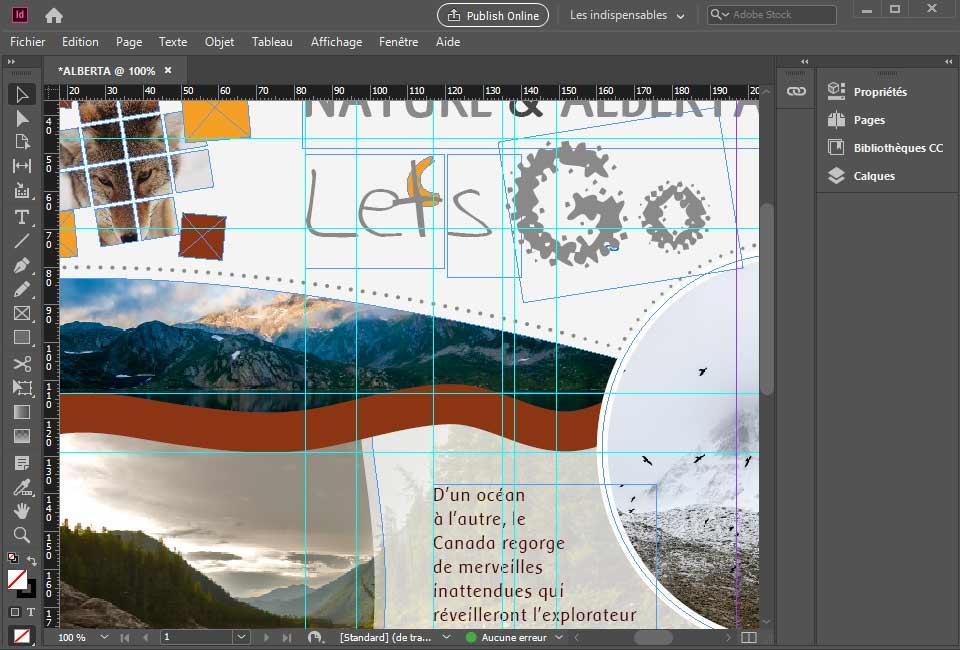 images/visuels-formations/illustration-formation-Indesign-ini